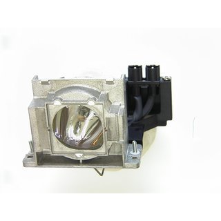 Replacement Lamp for MITSUBISHI DX549X